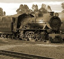 Hotham Valley Steam Train by Stephen Horton