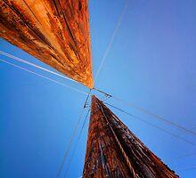 Poles by Bob Larson