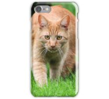 Dickens a little Tiger - So Full of Life iPhone Case/Skin