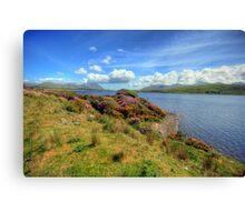 Connemara landscape Canvas Print