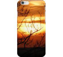 Burning Bush iPhone Case/Skin