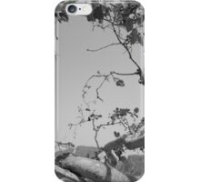 undying tree iPhone Case/Skin