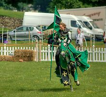 The Green Knight Unmasked.... by VoluntaryRanger