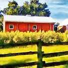 Orillia - Country Garage by Gracey