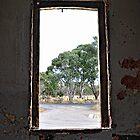 Ben Bullen NSW - Glimpse of Beauty by Bev Woodman