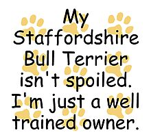 Well Trained Staffordshire Bull Terrier Owner Photographic Print