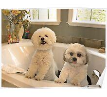 Bath Tub Party  Poster