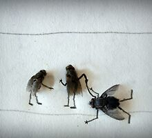 Dude....your fly's down!! by Susan Littlefield