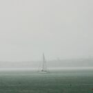 Rainy Mission Bay by Jim  Paredes