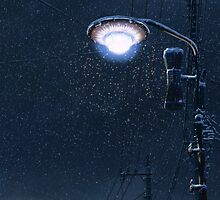 5 Centimeters Per Second – Light Pole by gentlemenwalrus