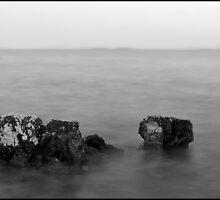 Adriatic stone. by Sime Jadresin