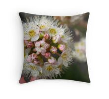 Round and round she goes.. Throw Pillow