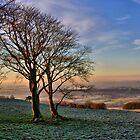 Winter Sunrise by Gareth Jones