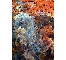 Rust's Vitality Photographic Print