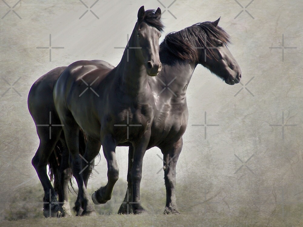 Two Friends by AnnieSnel