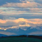 Rocky Mountain Morning  by Judy Grant