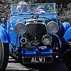 1933 Aston Martin Le Mans by Mark Wilson