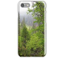 yosemite wild iPhone Case/Skin