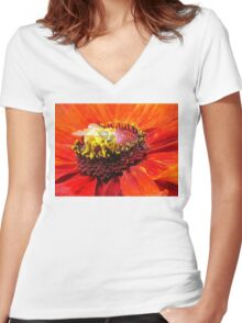 Pollination of Red Flower Women's Fitted V-Neck T-Shirt