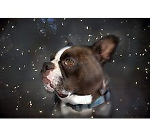 Star Gazer Photographic Print