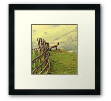 Long Way Down  Framed Print