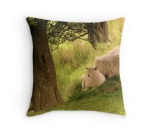 Time For A Rest... Throw Pillow