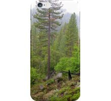 yosemite wild 2 iPhone Case/Skin