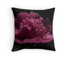Kissed by the morning sun Throw Pillow