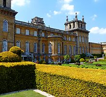 Blenheim Palace by Kim Slater