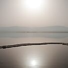 Dead Sea Serenity by Donell Trostrud