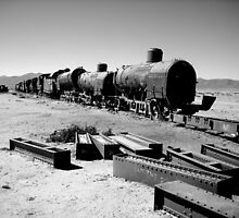 Abandoned Trains by Thomas Revill