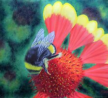 Bee On Coreopsis by KarenWoodArt