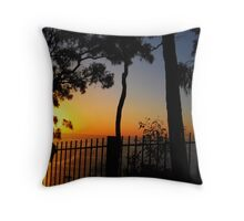 A View Through The Gaps Throw Pillow