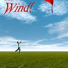 Catch the Wind by Carol and Mike Werner