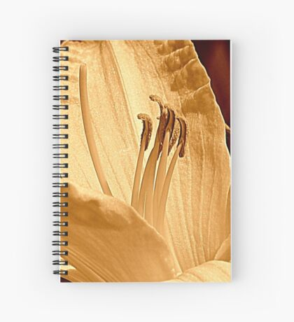 Once A Day Spiral Notebook