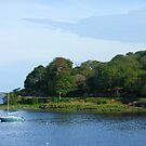 View across the Bay - Stornoway by MidnightMelody