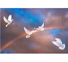 When Doves Cry Photographic Print