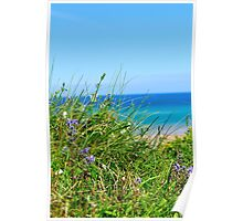 Grass and Sea Poster