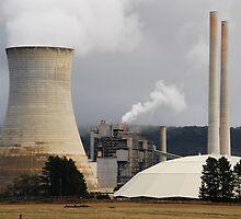 Wallerawang Power Station - NSW Australia by Phil Woodman