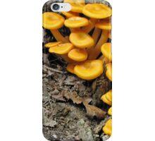 Omphalotus olearius iPhone Case/Skin