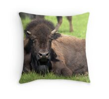 """Half-Horn"" Bison Throw Pillow"