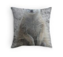 A Manor for Meerkats Throw Pillow