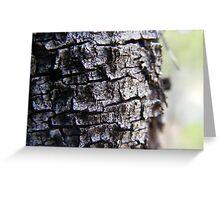 bark. Greeting Card