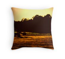 Moving Hay Throw Pillow