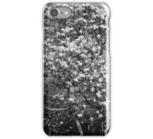 Magnolia Tree in Blossom (BW) iPhone Case/Skin