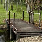 Little Foot Bridge 2 by TeAnne