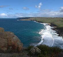 Top of the Bluff by Ben Loveday