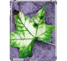 Fallen Star iPad Case/Skin