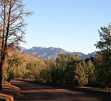 Country Road, Flinder's Ranges,S.A. by elphonline