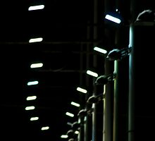 Wimbledon Dogs Track Lights by darius01